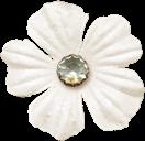 zpearn-sweetlittlething-ep-flower-5