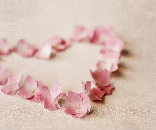 petal heart2