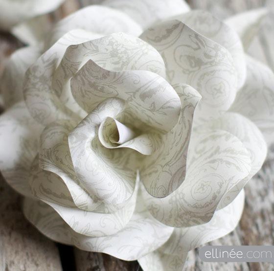 essay rose