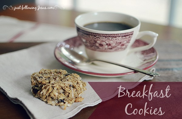 breakfast cookies 800g