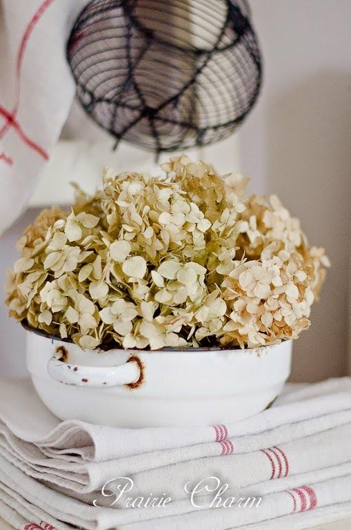 Enamel and dried hydrangea-1