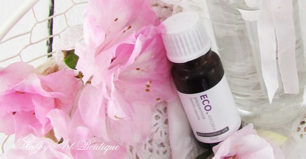 How to make Peppermint Cooling Spray with just 2 ingredients. Perfect for hot flashes! Get the recipe at Shabby Art Boutique.
