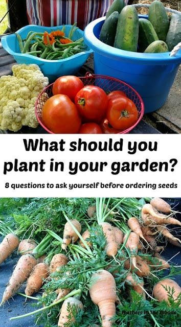 what to plant in garden