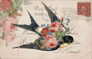 Free Vintage Bird Postcard Printable