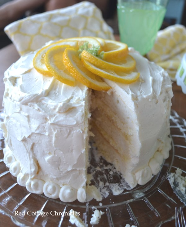 curd-cake-6-839x1024