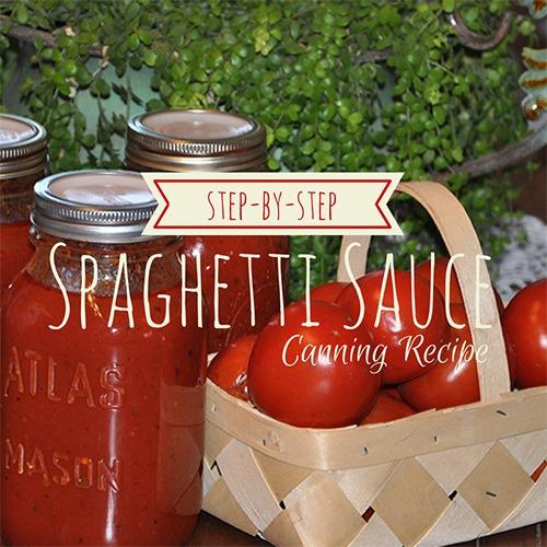 Spaghetti-Sauce-Canning-Recipe