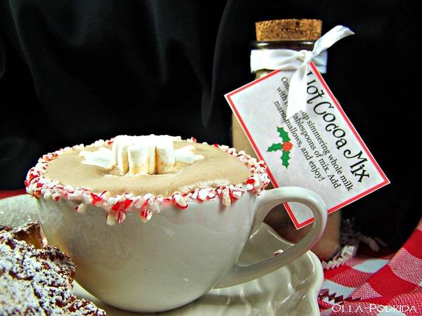 Holiday Hot Cocoa Mix 3