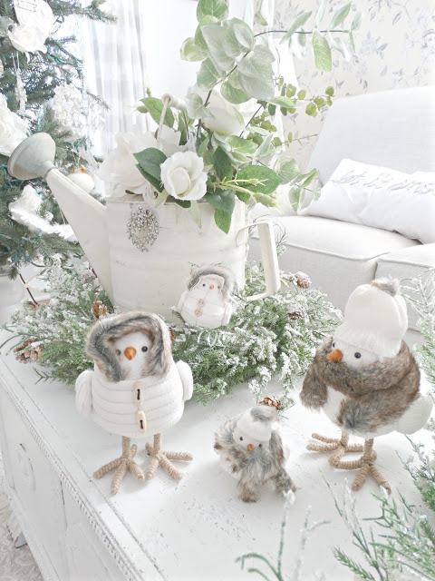 bird family snow birds