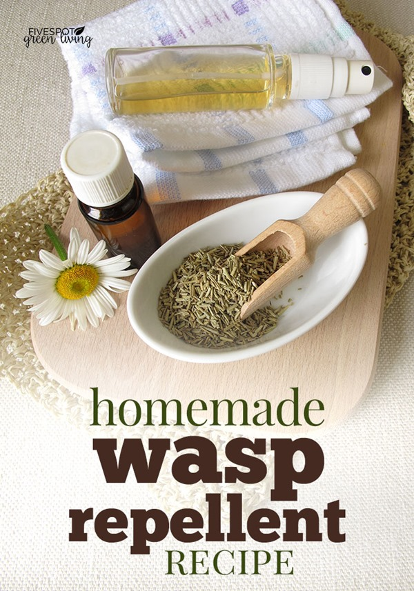 blog-homemade-wasp-repellent
