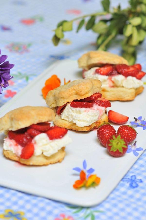 Strawberry-Shortcake-25-scaled